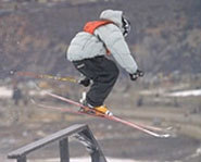 Picture of a skier at  a slopestyle event at the Winter X Games.