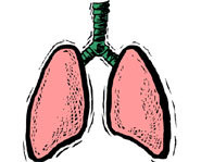 Strengthening your lungs is a good way to prevent how often you get exercise-induced asthma.