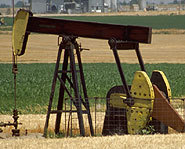 Oil is drilled in fields around the world.