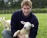 Prince William, son of Prince Charles and the late Princess Diana, is the heir to the British throne.