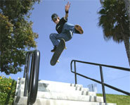 Picture of skateboarder, Ryan Sheckler.