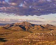 The Chihuahuan Desert covers parts of the US and Mexico.