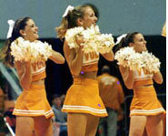 Cheerleaders yell cheers, wave pom poms and perform stunts.