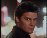 David Boreanaz - Angel.