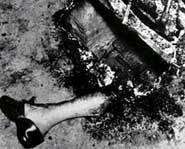All that was left of Mary Reese after spontaneous human combustion.
