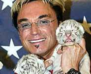 Roy Horn, shown here with tiger cubs, was attacked and nearly killed by a 7 year-old white tiger named Montecore.