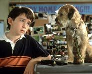 Liam Aiken hangs out with his outer space buddy Hubble in the movie Good Boy.