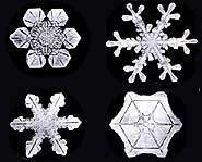 No two snowflakes look the same.