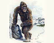 There have been recorded Bigfoot sightings for hundreds of years.