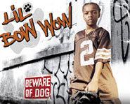 Do ya dig Lil Bow Wow?