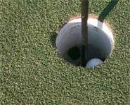 The hole in one is golf's ultimate shot.