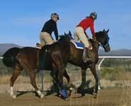 Horseback riding at the race track.