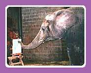Some elephants love to paint.