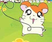 Read Kidzworld's review of Nintendo's Hamtaro: Ham-Hams Unite! video game for Gameboy Color and Advance!