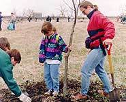 Will you be planting a tree on the last Friday in April for Arbor Day?