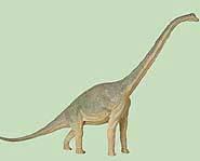 Sketch of Brachiosaurus.
