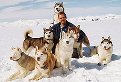 Paul Walker and Jason Biggs star in the Disney flick, Eight Below.