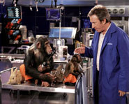 Photo of Tim Allen starring in Disney's The Shaggy Dog.