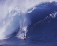 Photo of Pete Cabrinha riding the world's biggest wave.