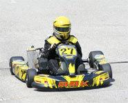 Picture of kart racing.