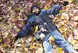 Rake up the leaves in your backyard and jump in 'em!