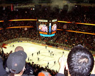 The Honda Center (AKA The Pond) is home of the Anaheim Ducks.