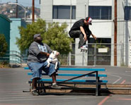 Skateboarding star Rob Dyrdek has gained noteriety for his talent as well as his MTV show Rob and Big.
