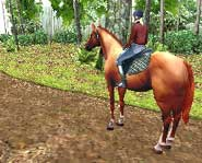 Raise, care for and ride your own virtual horse with the Horse Life video game for Nintendo DS! Check out the preview pics and video here.