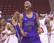 The NBDL is the official minor league system of the NBA.