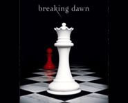 Breaking Dawn is the fourth book in the Twilight series.