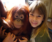 The second season of Bindi: The Jungle Girl premiers on Discovery Kids on September 27,2008.