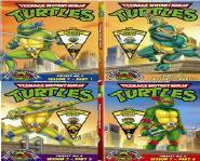 Teenage Mutant Ninja Turtles 25th Anniversary