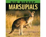 Marsupials By Nic Bishop