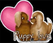Puppy Love?