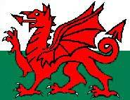 The Red Dragon or Y Ddraig  Goch.