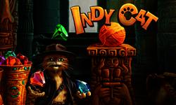 Indycat_150