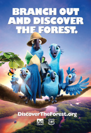 DISCOVER THE FOREST WITH RIO 2!