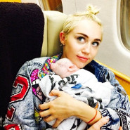 Can Miley Cyrus Handle Her New Baby Pig?