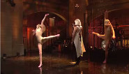 Sia: SNL Performance
