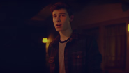 Shawn Mendes: Official Life of the Party Vid