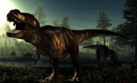 Tyrannosaurus rex poll