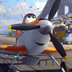 Planes-poll