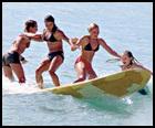 Surf-poll