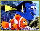 Nemo-poll