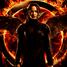 Katniss-poll