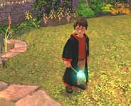 Harry Potter and the Chamber of Secrets image courtesy of EA