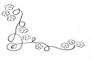 Flowers & Curves