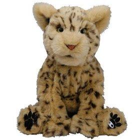 Alive Mini Leopard Cub