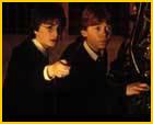 Harry potter poll