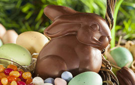 Chocolate easter bunny poll